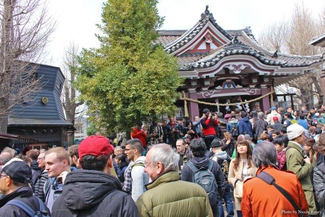ed kawasaki temple 1