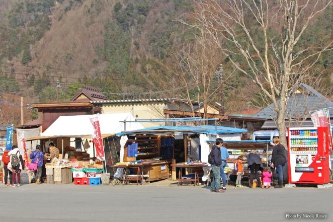 Iyashi no Sato on Lake Saiko Mount Fuji